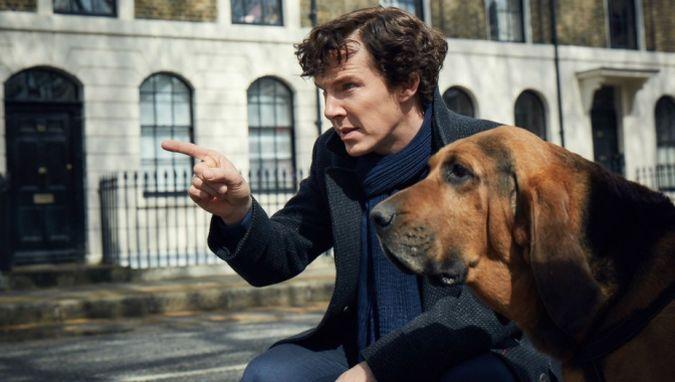 sherlock temporada 4 benedict cumberbatch perro