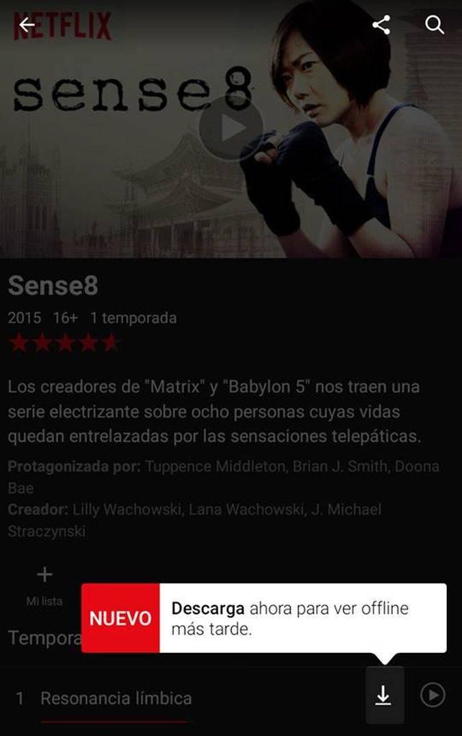 Netflix: 10 cosas que debes tener en cuenta antes de descargar