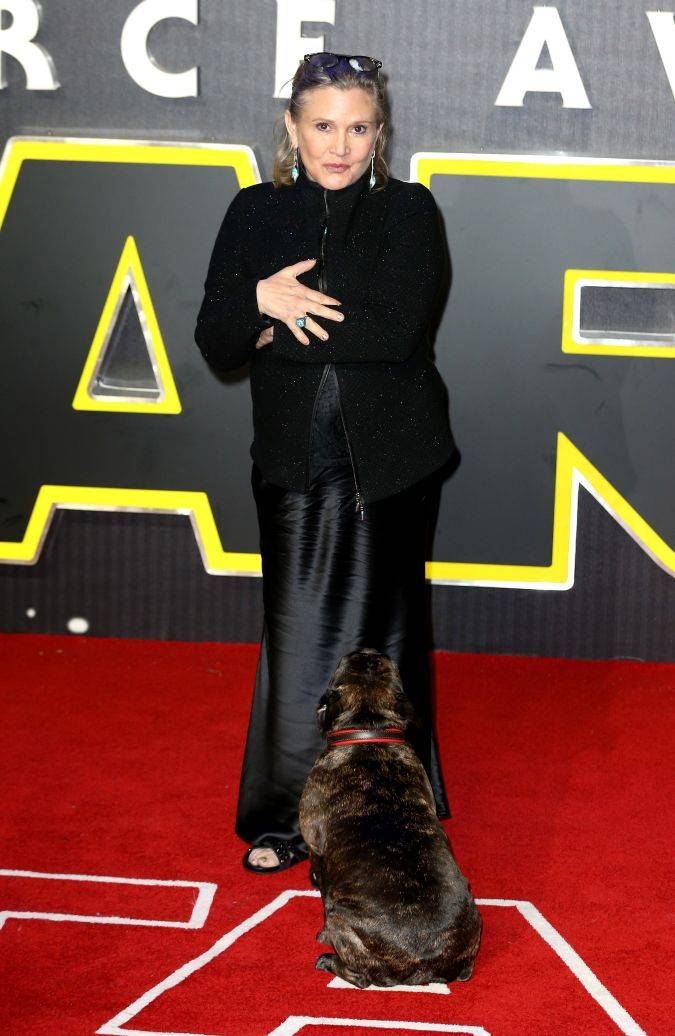 carrie fisher star wars alfombra roja the force awakens