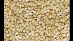Exportaciones de quinua crecieron 148 % y llegaron a 196 millones - Noticias de producción de leche en perú