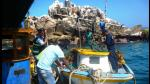 Detectan extracción ilegal de más de 800 kilos de algas en Arequipa - Noticias de uso intensivo del agua