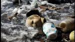 Río 2016: el preocupante estado de Guanabara a poco de los JJOO - Noticias de día mundial del agua